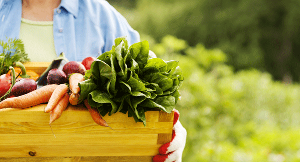 Organic Food and Your Health